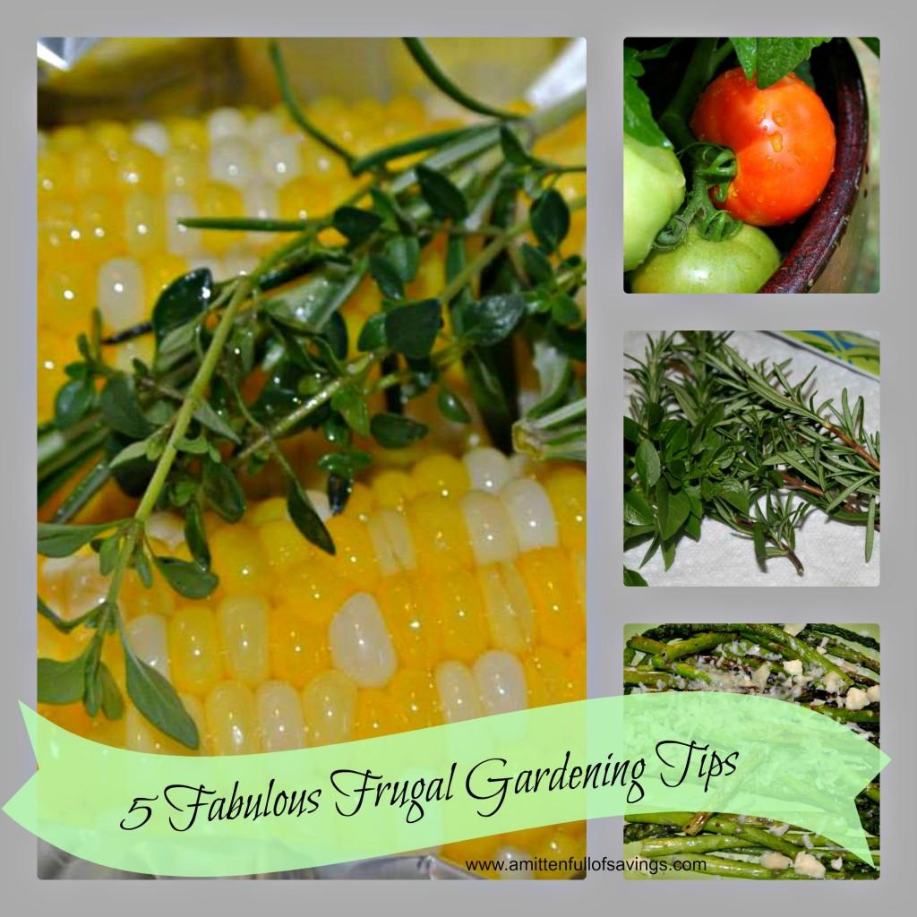5 Fabulous Frugal Gardening Tips