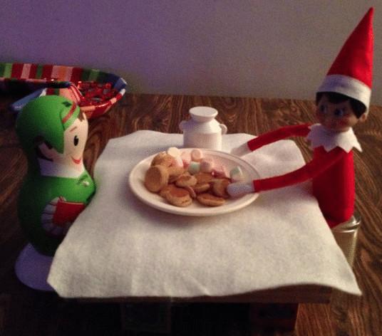 Elf has a tea party