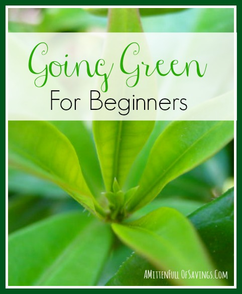 Going Green for Beginners