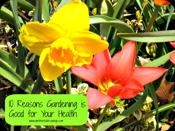 gardeningisgoodforyourhealth