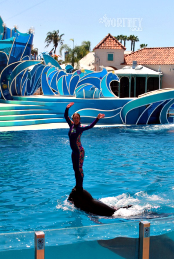 Trainer on Dolphin at Sea World Show