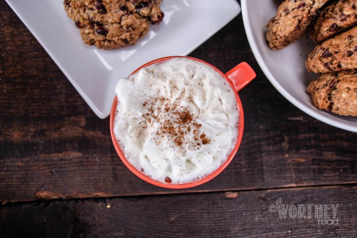 Salted Caramel Irish Coffee & Cherry, Cranberry & Chocolate Chunk Oatmeal Cookies