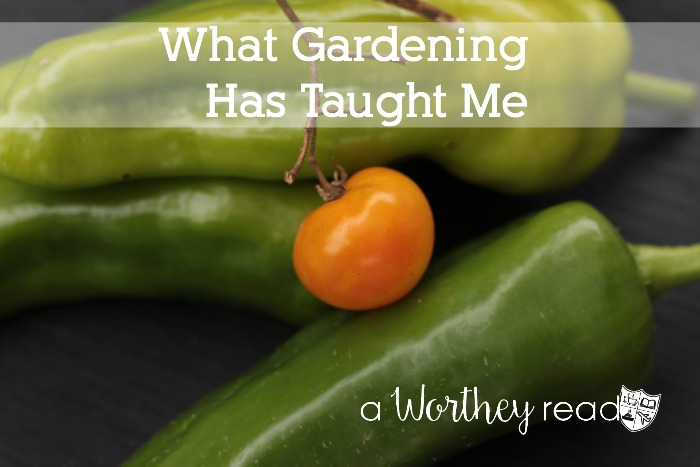Planning to start a Garden? Read the tips I learned about starting a Garden!