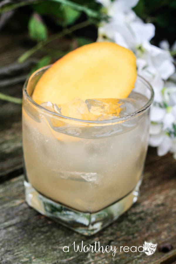 Easy Mixed Drinks like the Jamaican Cocktail are sure to please a crowd! Combine Gingerbeer, Vodka and Mango for a summer breeze cocktial- The Jamaican Cocktail