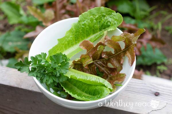Mini Potato Salad Bowls-5