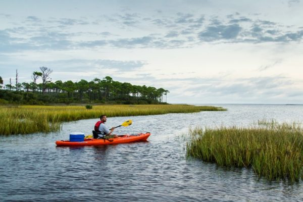 8 Adventurous Reasons To Visit Gulf County Florida