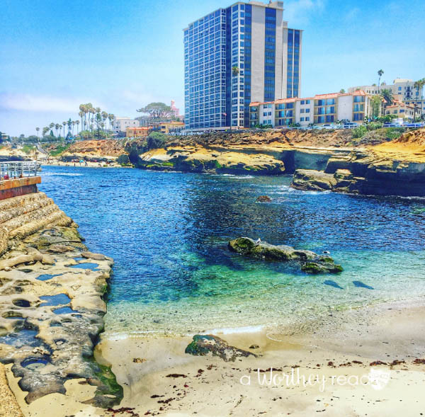 Things To Do in San Diego KIA-10