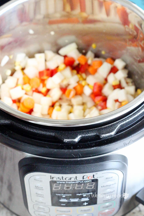 Easy recipe ideas using an Instant Pot- Pressure Cooker