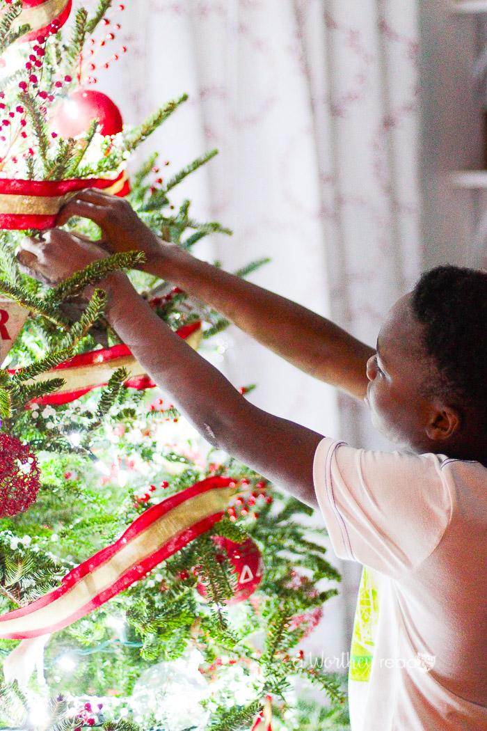 Douglas Fir Christmas Tree 2016