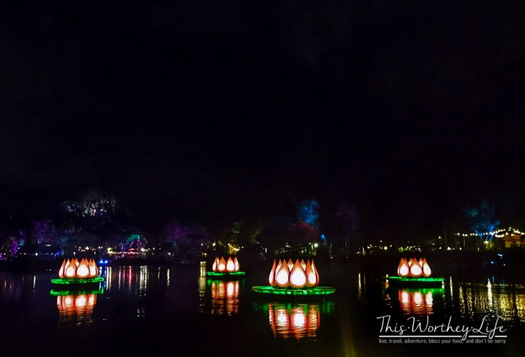 Disney's River of Light Attraction
