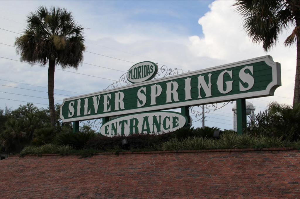 6 Adventures You Can Have In Ocala/Marion County Florida