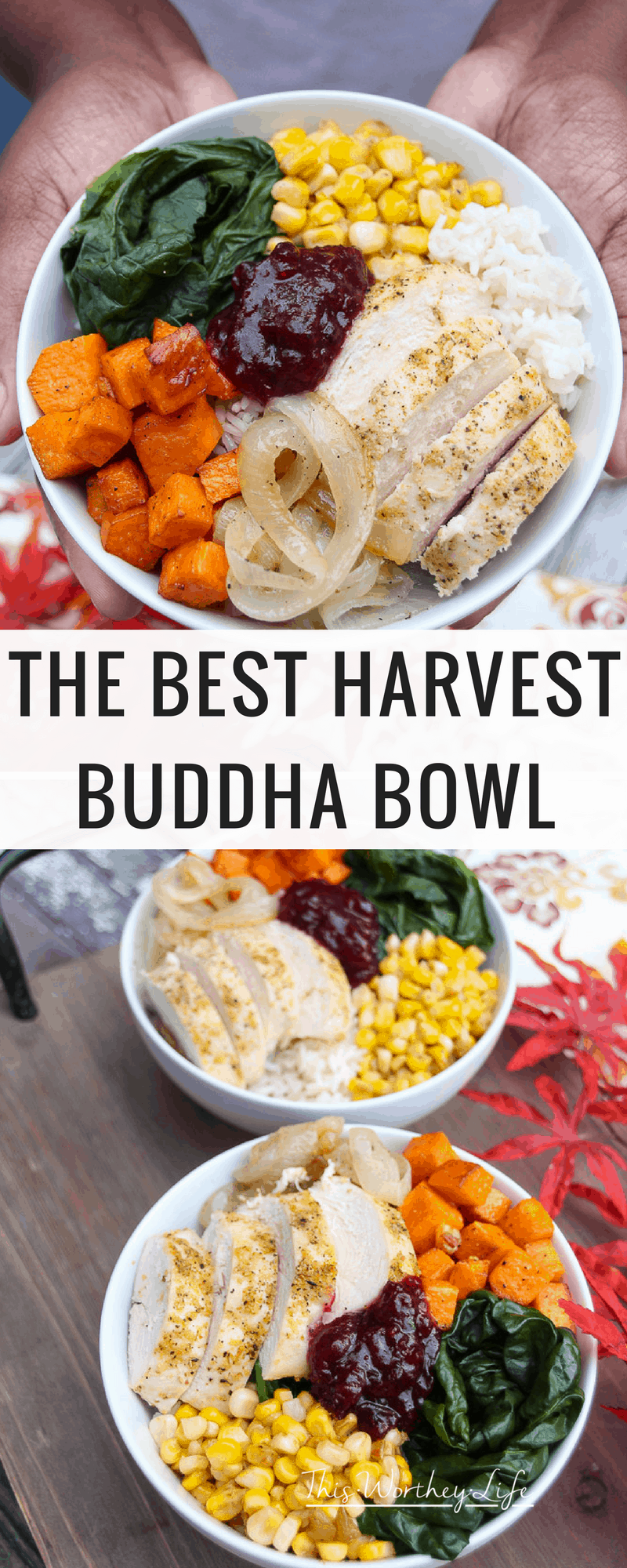 It's Thanksgiving in a bowl! Create a harvest buddha bowl with fresh produce, Jasmine rice, and deliciously seasoned chicken breasts. Get the recipe for our savory, with a sweet hint of Cranberry Sauce +Mint harvest bowl on the blog!