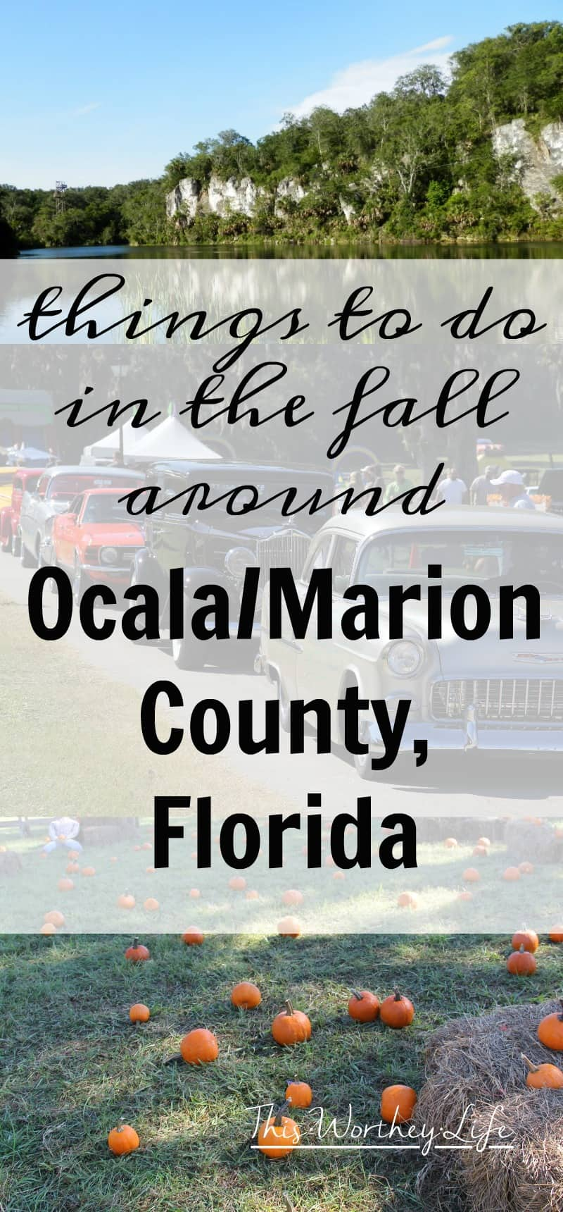 Find a lot of fun and unique things to do in Ocala/Marion County, Florida- Fall Activities In Ocala/Marion County, Florida