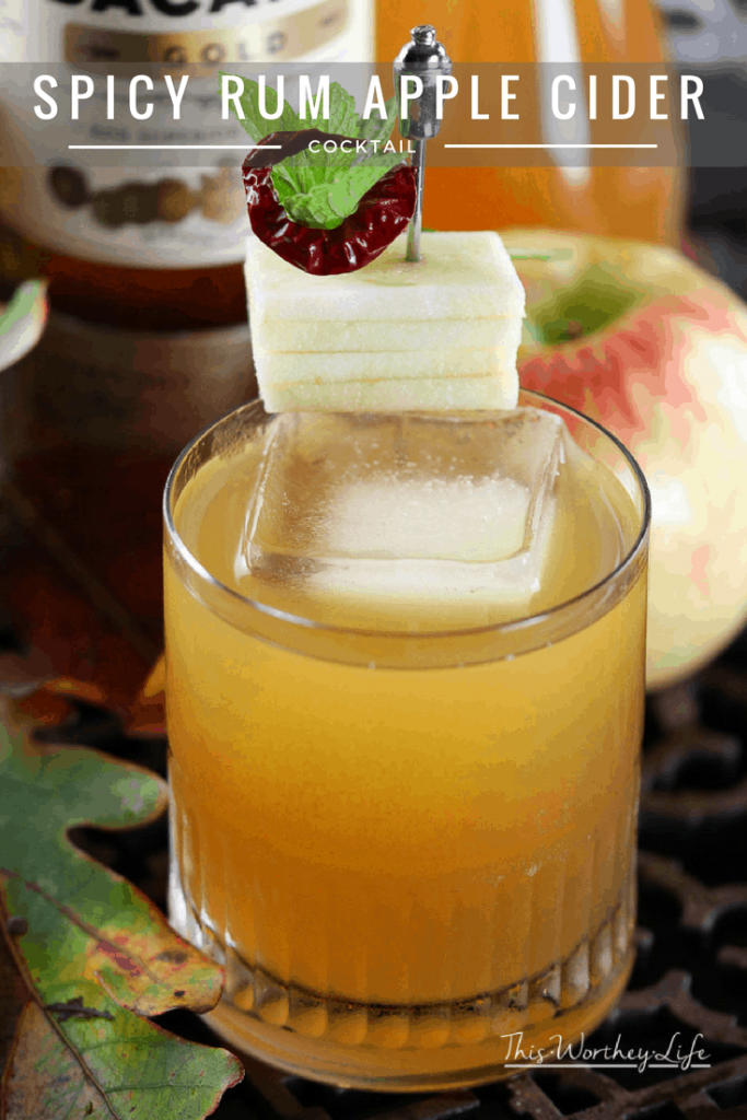 We created an elegant Halloween cocktail for you to make this year. Get this Halloween cocktail recipe on the blog- How to make a Spicy Rum Apple Cider