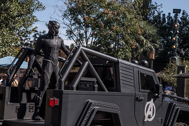 Black Panther Theme Park
