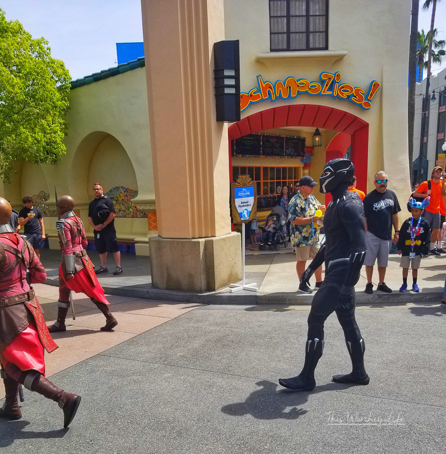 Black Panther Procession through Hollywood Land