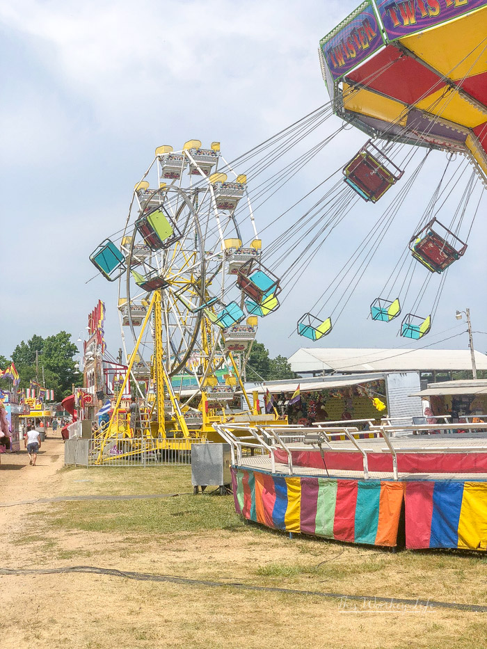 One of our favorite things to do during the summer months is attending the summer fair. If you're planning on hitting up fair, here are 25 things to enjoy at the fair in our summer fair bucket list.