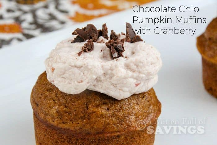 Chocolate Chip Pumpkin Muffins with Cranberry