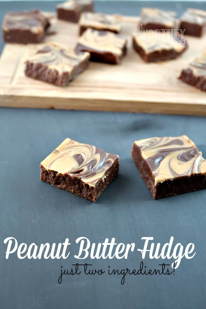 Easy Peanut Butter Fudge #recipe {2 ingredients}