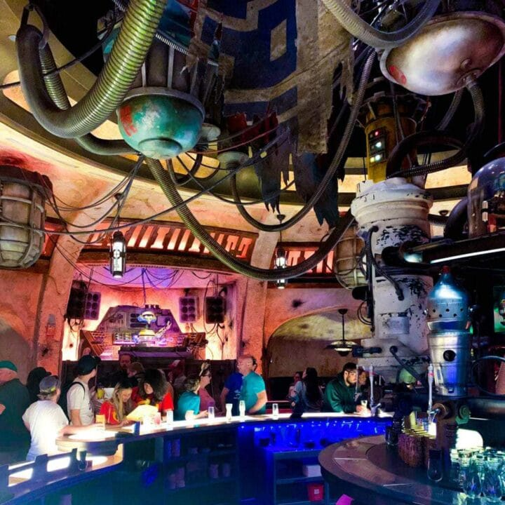 Oga's Cantina is the hotspot of Star Wars Galaxy's Edge. This new land is open in Disneyland and will soon be available to Walt Disney World guests.