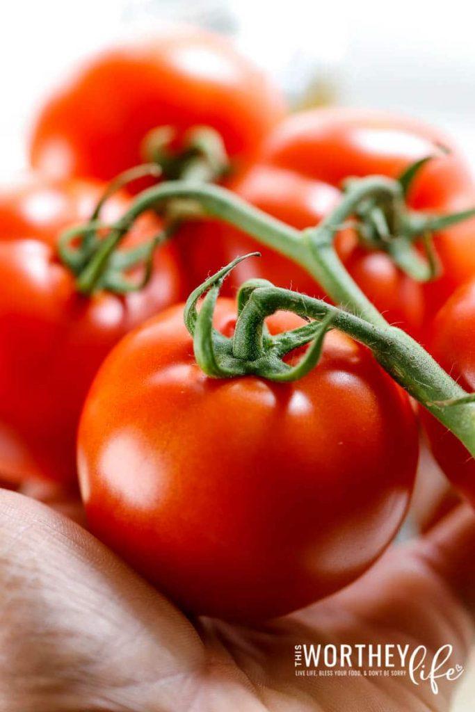 Fresh Tomato Bruschetta Chicken Recipe