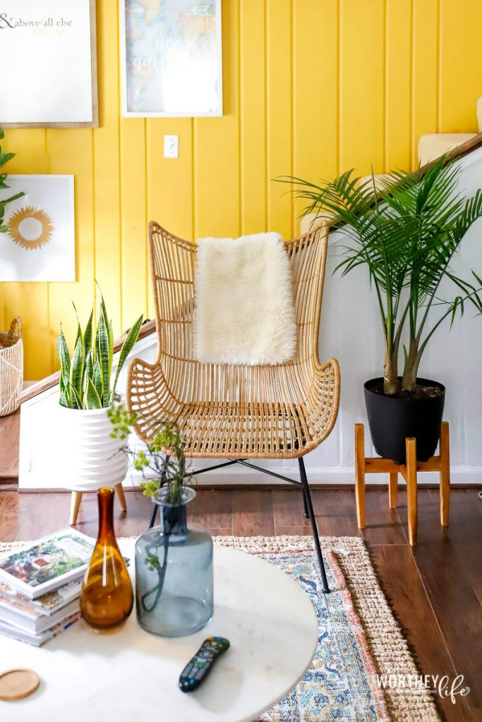 Houseplants are everywhere, and it adds a bit of green jungle love to spaces to help spruce up living rooms, kitchen, bathrooms, and bedrooms.