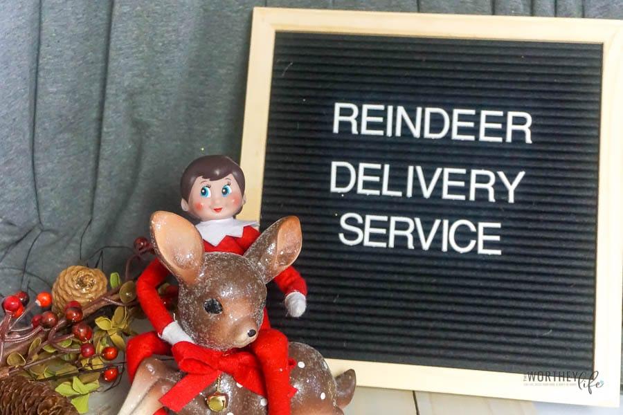 Elf Reindeer Delivery Service