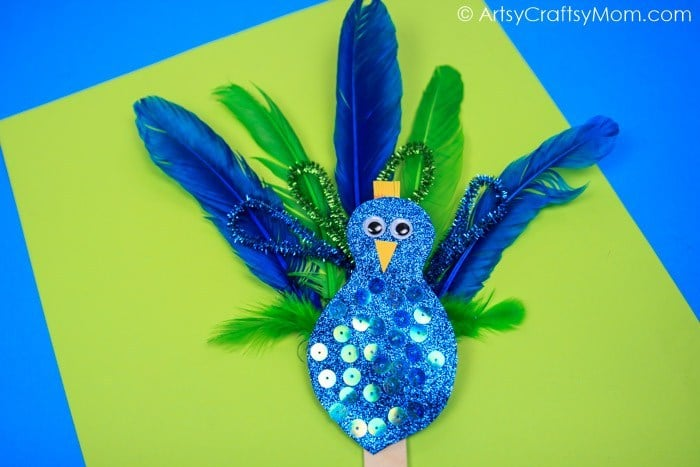 Pipecleaner Feather Peacock Craft