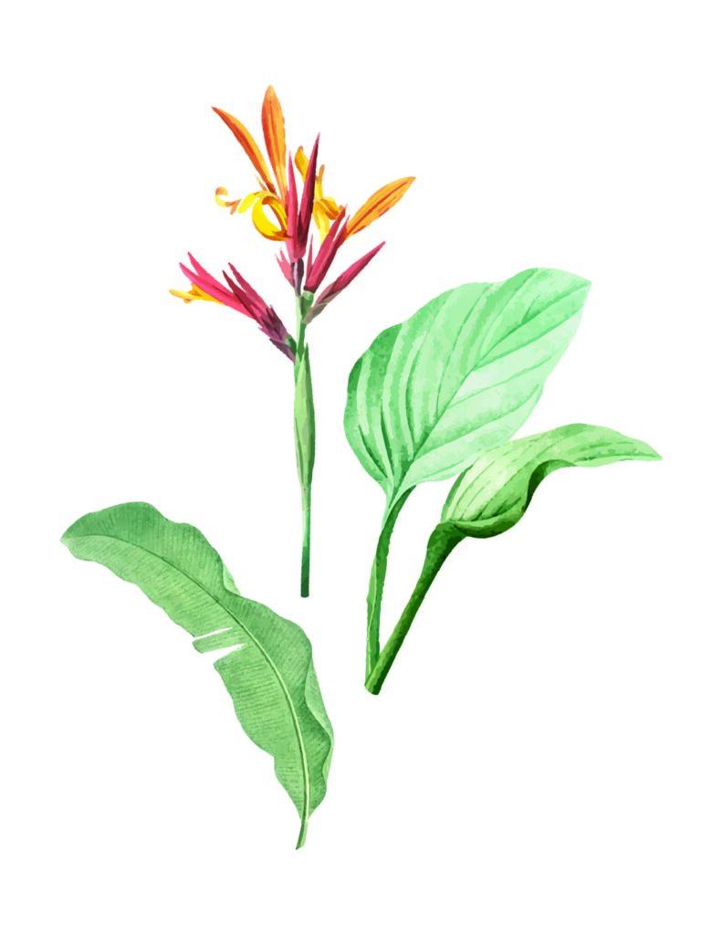 Flower Stem Wall Art Printable